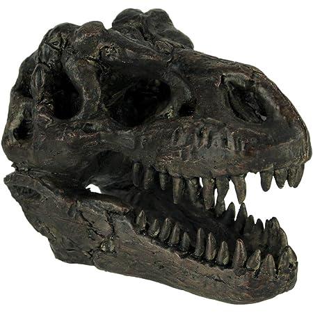 Rexy Tyrannosaurus Rex Statue Trex Dinosaur Model Collector AU Toy Gift I7L9