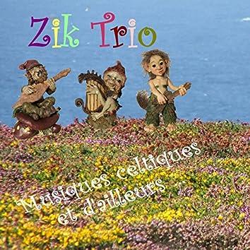 Musiques celtiques et d'ailleurs