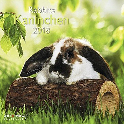 Kaninchen 2018: A&I Tierkalender