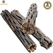 SunGrow Cholla Wood, Aquarium Decoration and Chew Toys for Small Pets, Artistic Home-Decor, Added Nutrition, Long Lasting Driftwood, Natural and Pet Safe, for Playing and Hiding