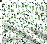 Sukkulenten, Kakteen, Kaktus, Pflanzen, Natur Stoffe -