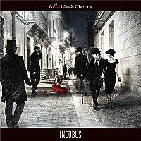 INCUBUS (CD+DVD) (初回生産限定盤)