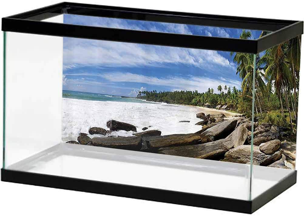 Seaside Decor Collection Aquarium High Max 67% OFF order Wallpaper Background Tropical