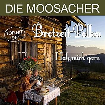 Brotzeit-Polka / Hab mich gern