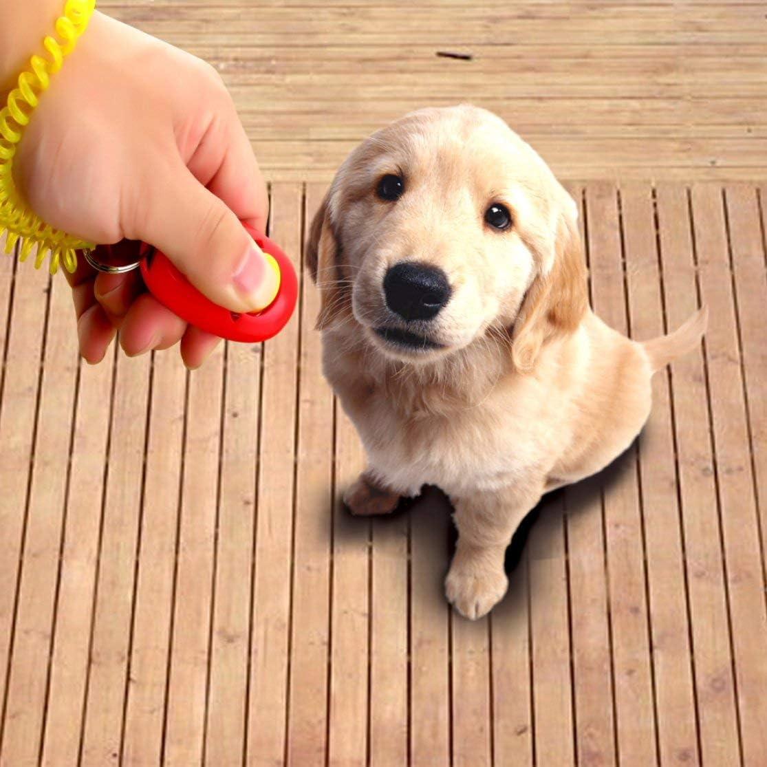 Jessicadaphne Perro Mascota Click Clicker Entrenamiento Obediencia Agilidad Entrenador Ayuda Correa para la mu/ñeca Ideal para Entrenamiento Obediencia//HTM//Agilidad Suministros para Mascotas