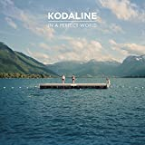 In a Perfect World von Kodaline