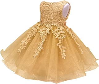 ZEVONDA Infant Girls Pretty Dress - Lace Embroidered Bridesmaid Pageant Birthday Baby Girl Wedding Princess Dress