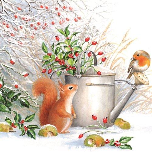 20 servetten eekhoorns & vogel in de winter/dieren/winter/Kerstmis 33x33cm
