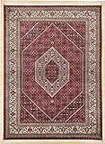 Theko Alfombra clásico Trabajo Manual diseñador de alfombras variaciones de tamaño en Color Crema Rojo 250 x 350 cm