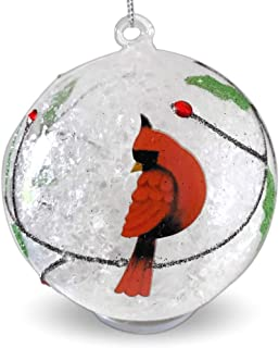 Best led lighted christmas ornaments Reviews