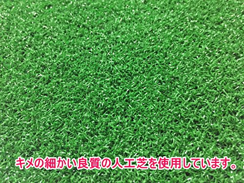 『Discover winds ゴルフ練習用マット スイング軌道矯正ガイド 練習用ボール2種類 ゴム製ティー セット』の4枚目の画像