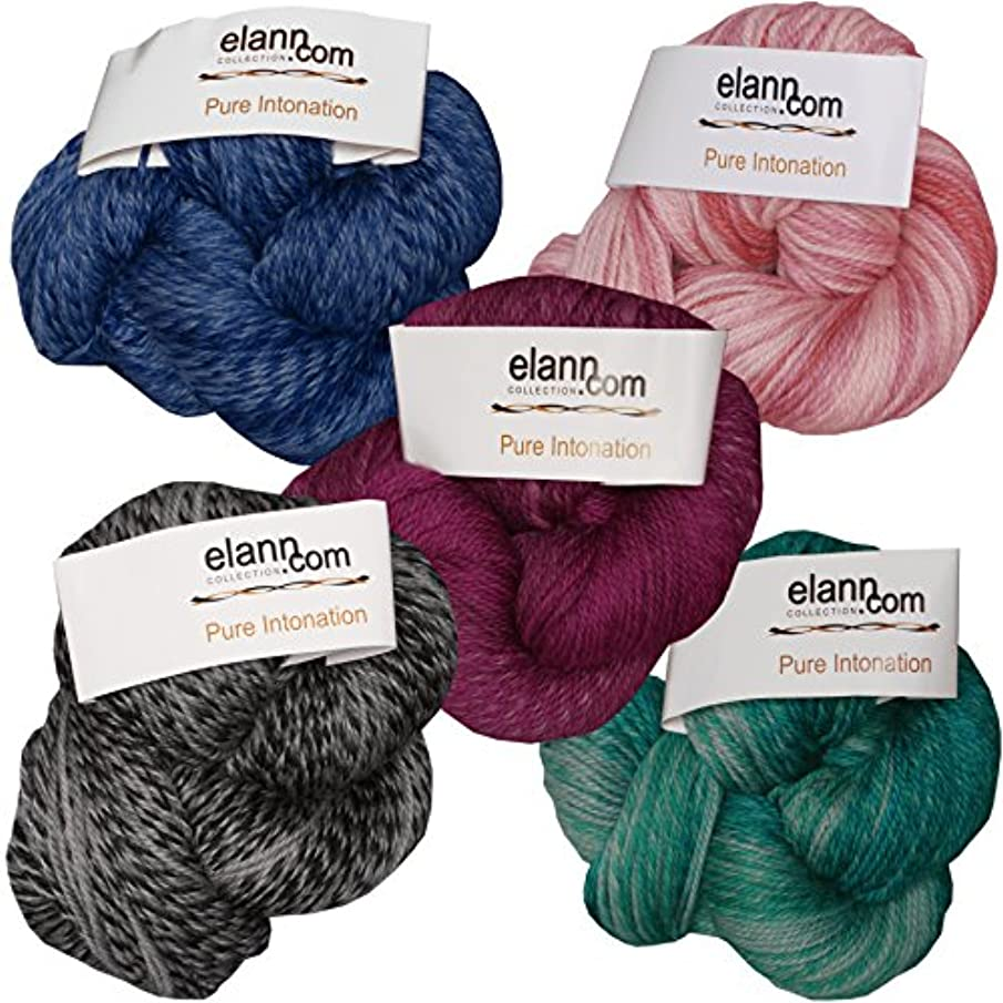 elann Pure Intonation Yarn | 5 Ball Bag | 712 Color Pack 2 (1 Each 703, 705, 707, 709, 710)