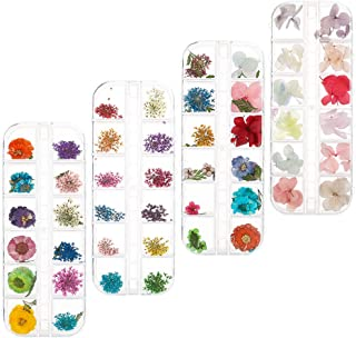 Xinzistar 144 Pcs Nail Dried Flowers Real Natural Flowers Nail Art Supplies 3D Applique Nail Decoration Colorful Nail Stic...