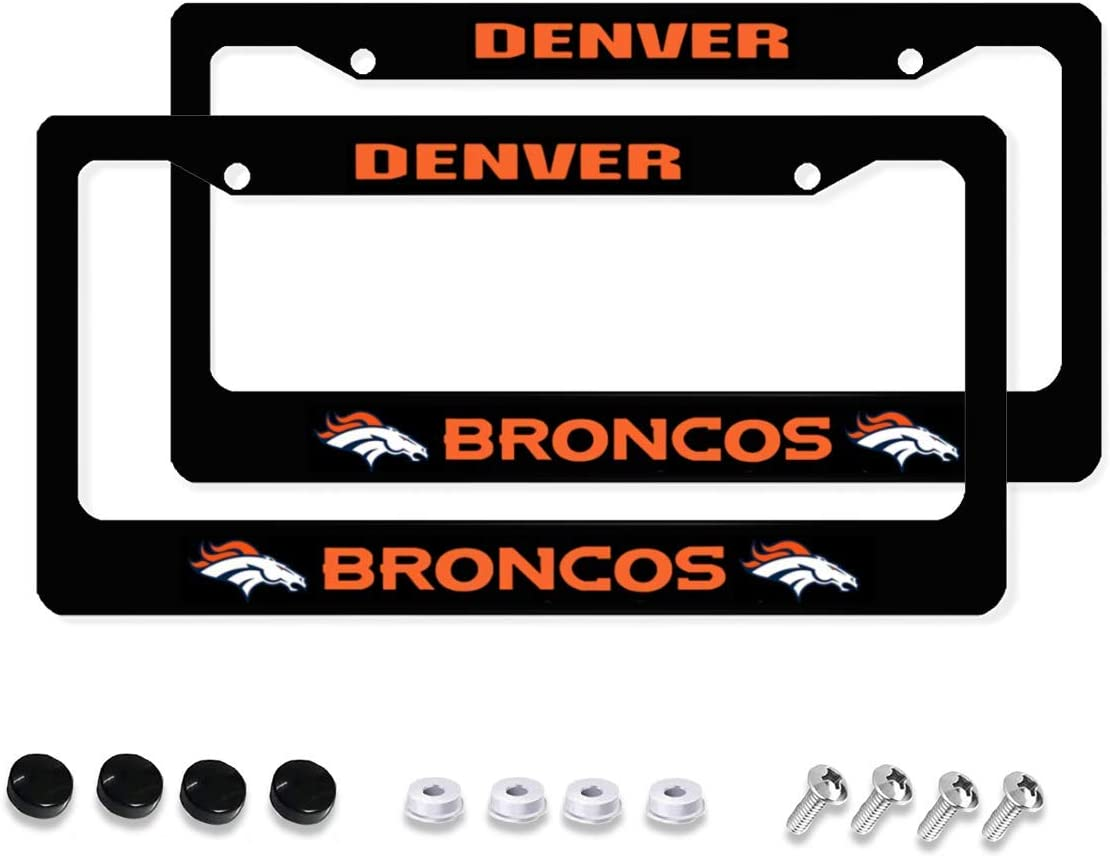 leisure MART 2 Pcs Car Licenses Plate Frames 2 Holes Stainless Steel Durable and Suitable for Most Cars
