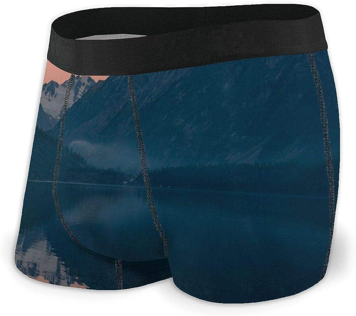 Randolph Wordsworth Mens Boxer Briefs Special Landscape Bikini Underwear Stretch Low Rise Trunks Boys