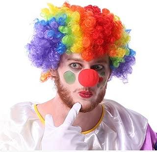 JH child women Men's Rainbow Afro Clown Wig for Sports Fan Cheerleaders Carnival Cosplay Halloween + Red Clown Nose