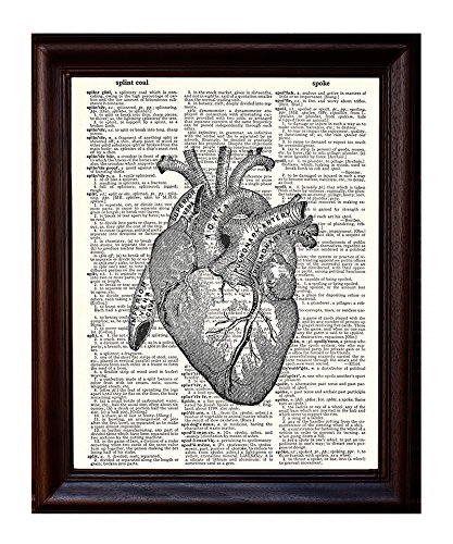 Anatomical Human Heart - Printed on Upcycled Vintage Dictionary Paper - 8x11 Anatomy Art Poster/Print