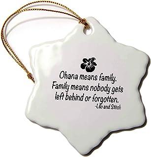 3dRose Llc Orn_163985_1 Porcelain Snowflake Ornament, 3-Inch, Ohana Means Family