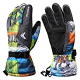 Aomh Winter Gloves Ski Gloves for Men and Women Windproof Waterproof Non-Slip Snow
