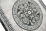 Traum Moderner Teppich Designer Teppich Orientteppich mit Glitzergarn Wohnzimmer Teppich mit Bordüre und Kreismuster in Grau Anthrazit Creme Größe 120x160 cm - 5