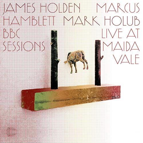 James Holden, Marcus Hamblett & Mark Holub