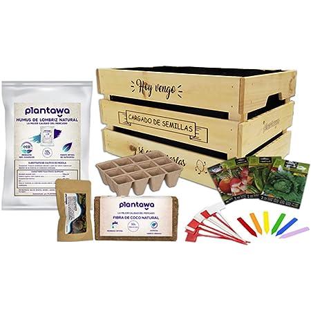PLANTAWA Kit de Cultivo, Huerto Urbano, Kit de Cultivo Completo Fabricado en España, Ecológico, Regalar Español