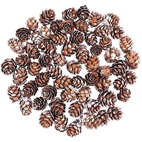 Cooraby 50 Stück Mini-Schnee-Tannenzapfen, 2–3 cm, Weihnachtsschnee-Tannenzapfen, Ornamente für Heimdekoration, Herbst und Weihnachtsbasteleien