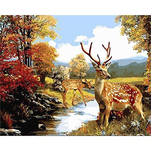 nobrand Sika Deer DIY Digitales Öl Gemälde Nach Zahlen Kit Auf Leinwand Farbe Nach Zahlen Tiere Vorgedruckt Einzigartiges Geschenk Kinder Erwachsene