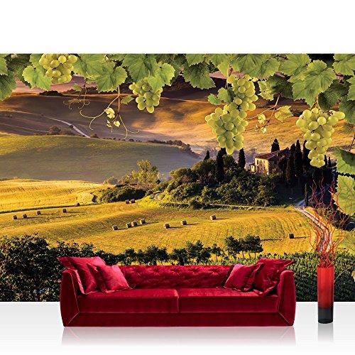 Fototapete 368x254 cm PREMIUM Wand Foto Tapete Wand Bild Papiertapete - Wein Tapete Landschaft Weintrauben Feld grün - no. 1852