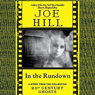 In the Rundown audiobook cover art