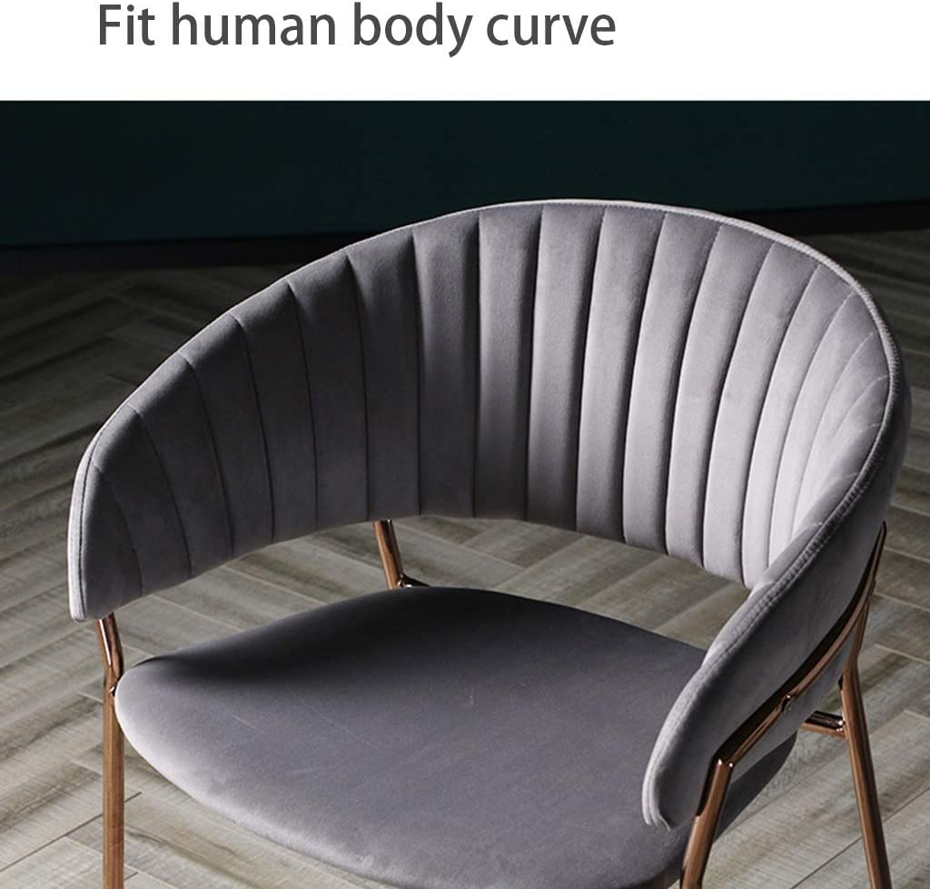 HEG Chaise de salle à manger en métal minimaliste moderne et minimaliste pour salle à manger, salle à manger, maquillage, chaise en fer forgé (couleur : bleu) Bleu