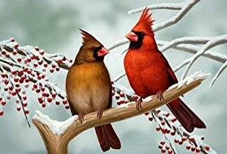 5D-DIY-Diamond Painting Kits Home Wall Decoration and for Relaxation Vermilion Bird in The Snow Gifts for Adults Kids and ...