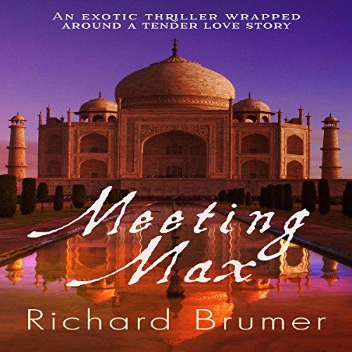 Meeting Max audiobook cover art
