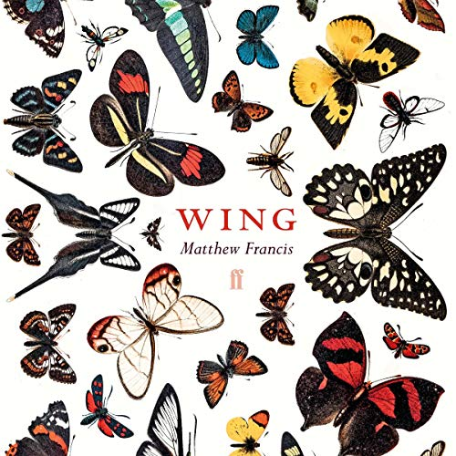 Wing  By  cover art