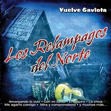 Vuelve Gaviota