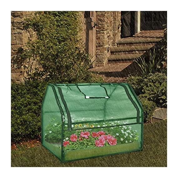 SGHB Solid Wood Raised Garden Bed with Greenhouse Planters Box for Vegetables Flower Fruits Herb Outdoor (Green Round) 7 The greenhouse of this combination is composed of PE cover and anti-rust sprayed steel tube. The garden bed is made of well-polished fir wood without painting. These high-quality materials extend its service time. Four-sided tie are used to fix the cover with each poles. All-round edging increases durability while beautifying the appearance. The steel frame can be quickly installed by plastic connectors. There are 5 wooden strips to divide the space, can be easily installed and removed. Supports growing multiple plants at the same time, improve the utilization of space and convenient for you to manage flowers and plants.