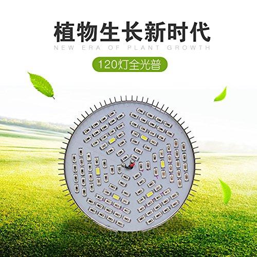 120 LED-Band pflanze Lampe E27 Blumenkohl kinderzimmer Lampe 45 W Gewächshaus Pflanzen Licht