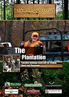 Ultimate Outdoors with Eddie Brochin The Plantation Falconry Hunting Excursion