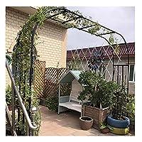 LINGOSHUN 屋外の頑丈なローズ ガーデン アーチ、登山植物用の自己組織化ガーデン アーバー、耐候性/黒 / W4.25×H2.67m