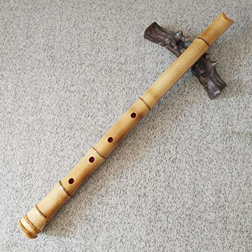 Shakuhachi - Flauta de bambú japonesa en D de alta calidad - Bolsa e instrucciones incluidas (idioma español no garantizado)
