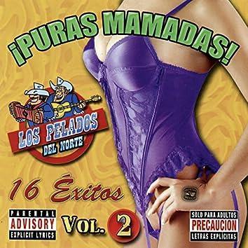 Puras Mamadas!, Vol. 2