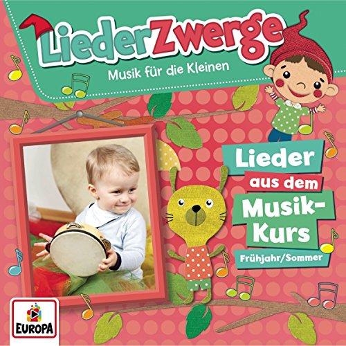 Liederzwerge-Lieder aus dem Musik-Kurs,Vol.2: