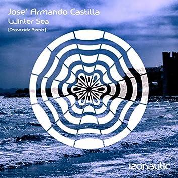 Winter Sea (Drosoxide Remix)