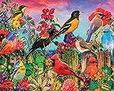 Pintura al óleo por números kit Pintura por números para adultos o niños al Pintura por números Arte decoración del hogar -Pájaro loro colorido 40 x 50 cm sin marco
