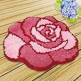 Caige Kits de Gancho de Cierre de Bricolaje, Alfombrilla la elaboración de artesanías Bordado de alfombras Conjunto, 20 x 16,5 Pulgadas,D