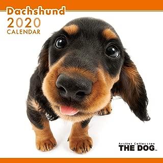 The Dog Wall Calendar 2020 Dachshund