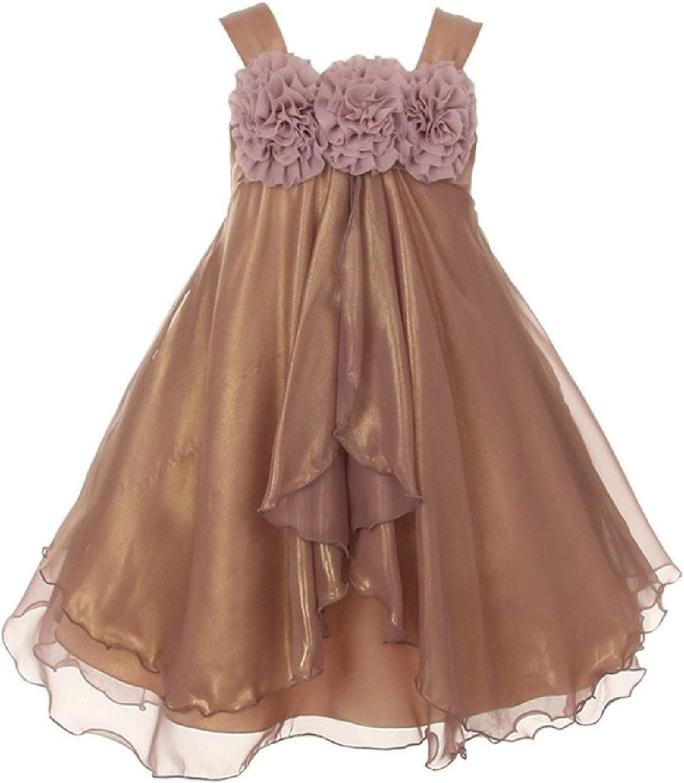 BluNight Collection Elegant Empire Waist Floral Design Little Girl Special Occasion Dress