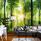 murimage Papier Forêt 3D 366cm x 254cm Colle Inclus Photo Mural Bois Arbres Soleil Bureau Wallpaper