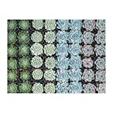 Galison Succulent Garden 500 Piece Double Sided Jigsaw Puzzle for Adults and Families, Fun Family Puzzle with Plants and Succulent Theme