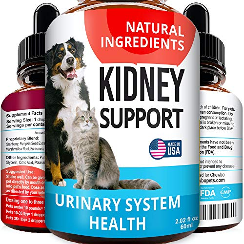 Kidney Support for Dogs & Cats - 2oz Pet UTI Medicine - Cranberry, Echinacea, Pumpkin - Feline Renal Support Supplement - Kidney Rejuvenator for Dogs - Kidney Problems and Disease Remedy - Made in USA